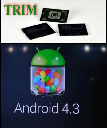 Android_43_TRIM
