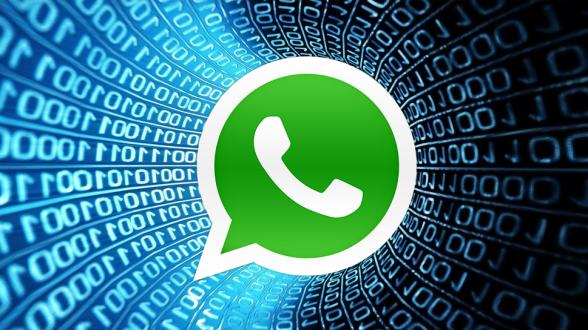 WhatsApp_ABOFalle