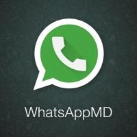 WhatsAppMD - MOD von Joaquin Cuitino hüllt den Messenger in Googles Material Design